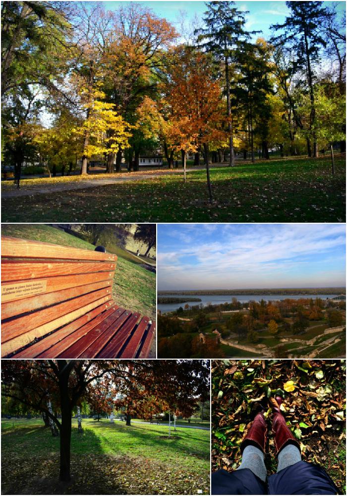 Blog_belgrade4_17112012