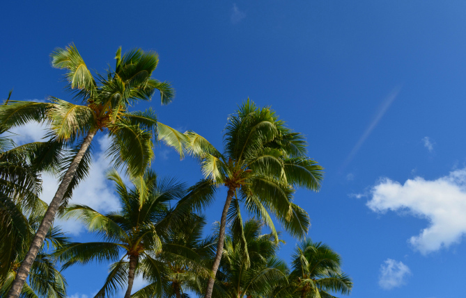 Hawaii2012_26